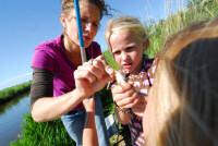 Foto van buiten spelende kinderen