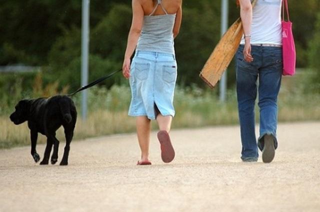 Twee mensen wandelen met een hond